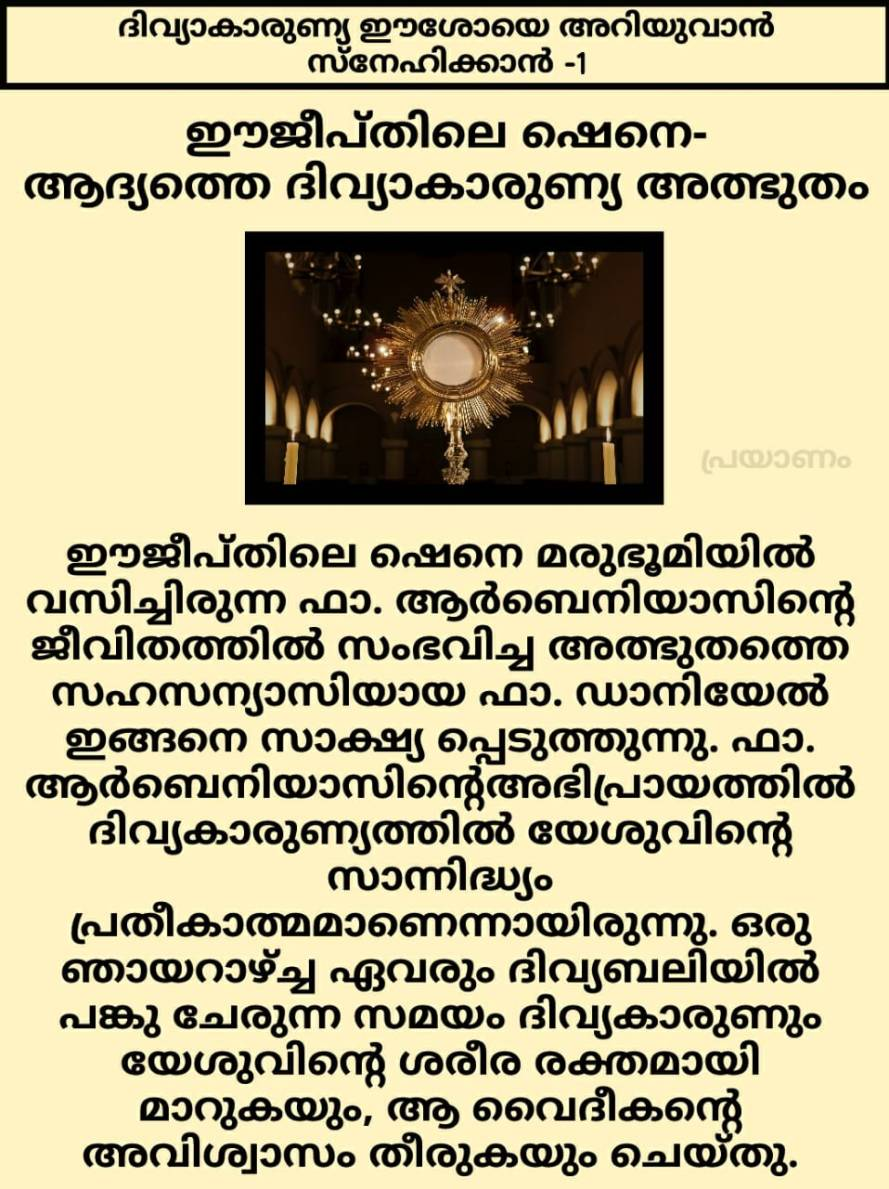 First Eucharistic Miracle in Egypt 1