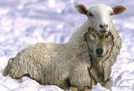 dhamma musings: Wolves In Sheep's Clothing
